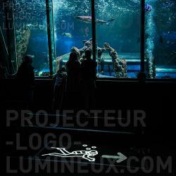 Signalétique flèche lumineuse sens visite pour aquarium, musée et exposition